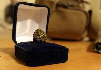 engagement bud