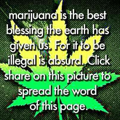 marijuana is the best blessing the earth has given us