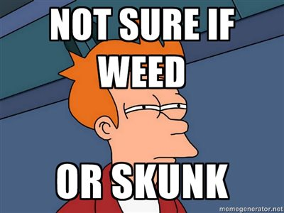 not sure if weed or skunk