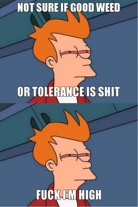 not sure if good weed or tolerance is shit