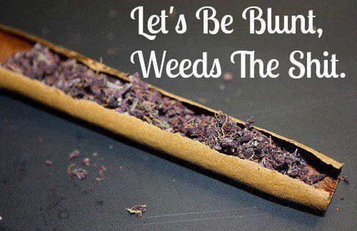 Let's be blunt, weeds the shit
