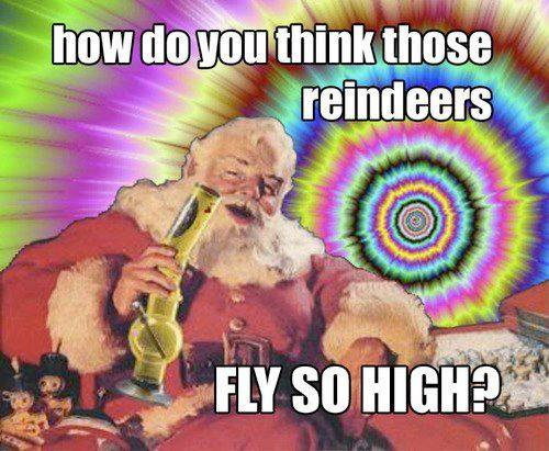 how do you think those reindeers fly so high?