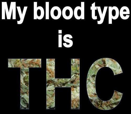 My blood type is THC