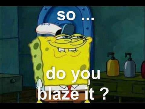 so.. do you blaze it?