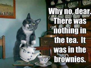 There was nothing in the tea, it was in the brownies