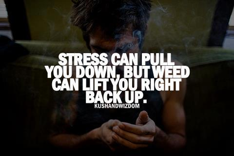 stress can pull you down but weed can lift you back up