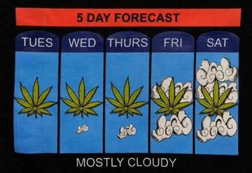 5 day forecast - mostly cloudy