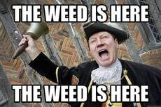 The weed is here!