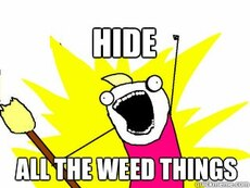 hide all the weed things