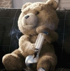 stoned teddy