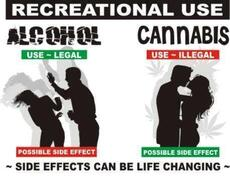 alcohol vs cannabis