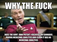 why the fuck does the govt own patent #6630507 on cannabis having medicinal qualities