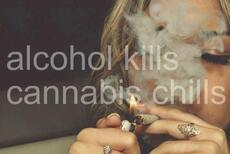alcohol kills, cannabis chills