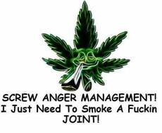 screw anger management