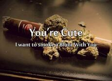 You're Cute. I want to smoke a blunt with you