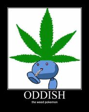 Oddish the weed pokemon