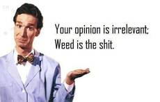 your opinion is irrelevant weed is the shit